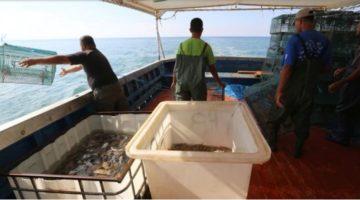 Pescadores en el caribe