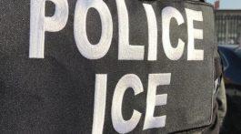 ice_operativo