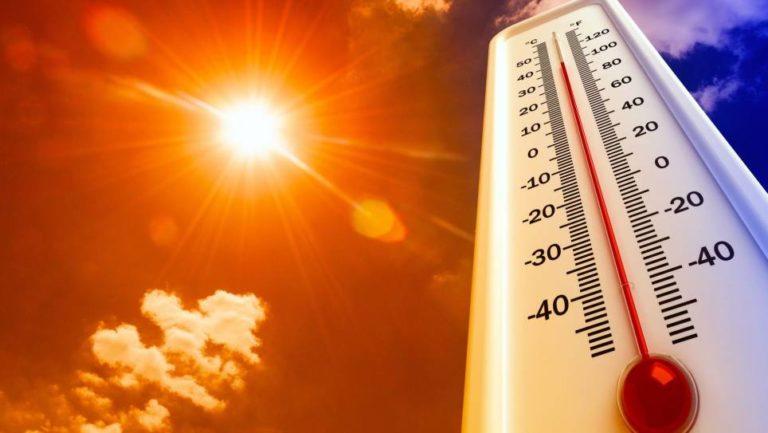 Ola de calor dejó  la primera muerte en Bélgica