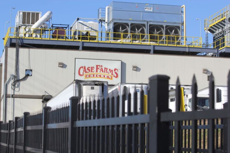 ICE: Siete hispanos detenidos en una planta avícola