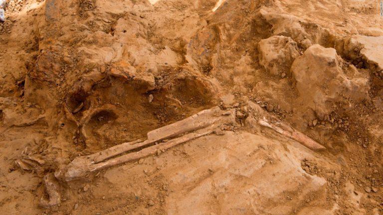 Hallan restos humanos, con tres mil años de antigüedad