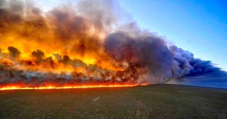 Artistas latinos piden frenar incendios en el Amazonas