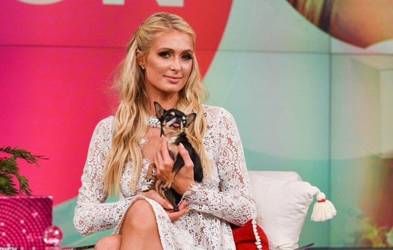 Paris Hilton busca público latino en Despierta América