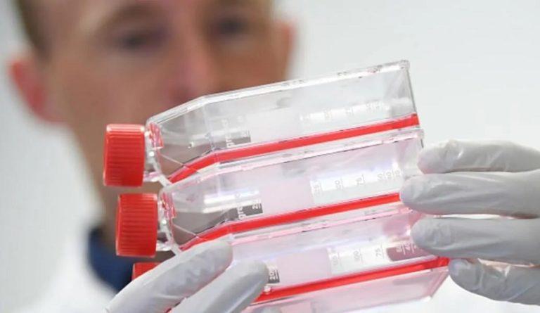 Vacuna contra coronavirus en desarrollo