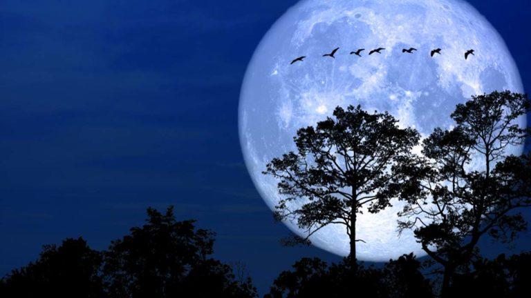 Más grande y más brillante, así se verá la luna el fin de semana