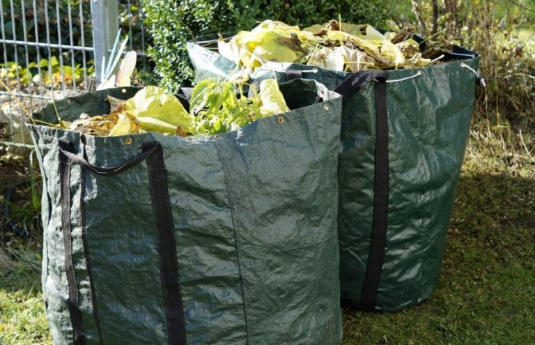 ¡Atención! Inicia recolección de desechos de jardín