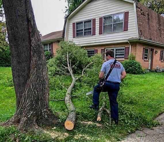Retiran árbol que cayó en patio de anciano