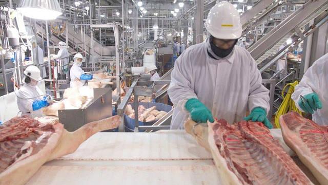 NC: Brote de coronavirus en procesadoras de carne y aves