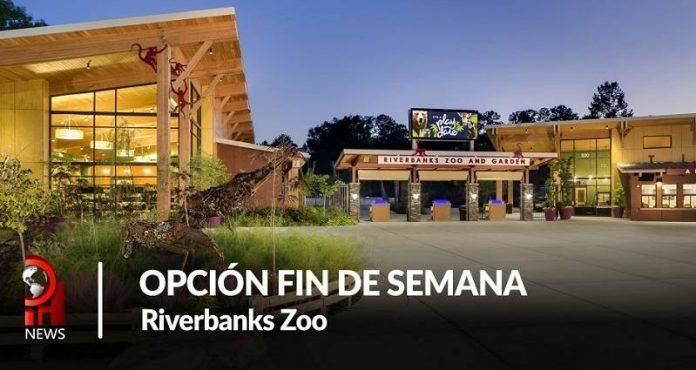Opción fin de semana: Riverbanks Zoo and Garden