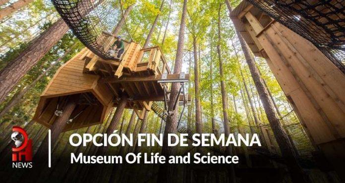 Opción fin de semana: Museum of Life and Sciencie
